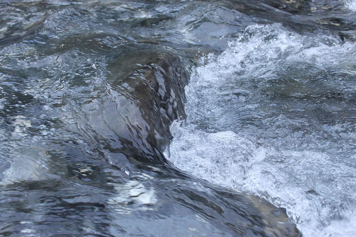 unil rencontre de l'eau